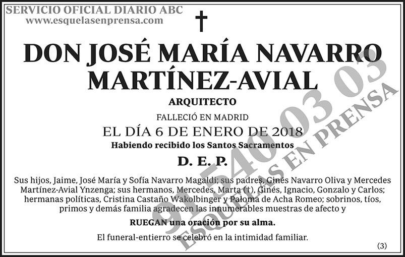 José María Navarro Martínez-Avial